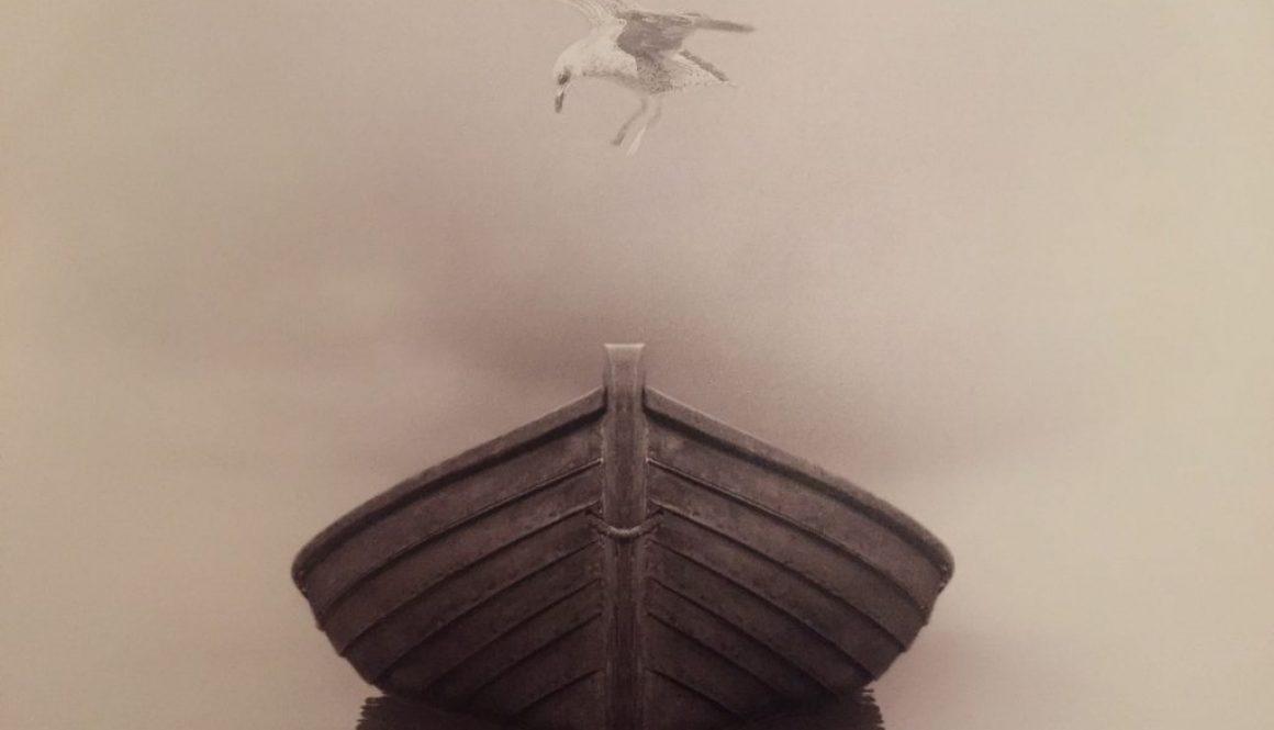 bird&boat