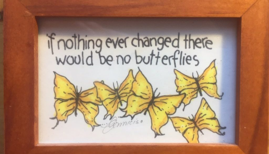 if nothing ever changed, butterflies