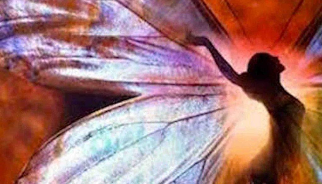 human-butterfly_1800x1000